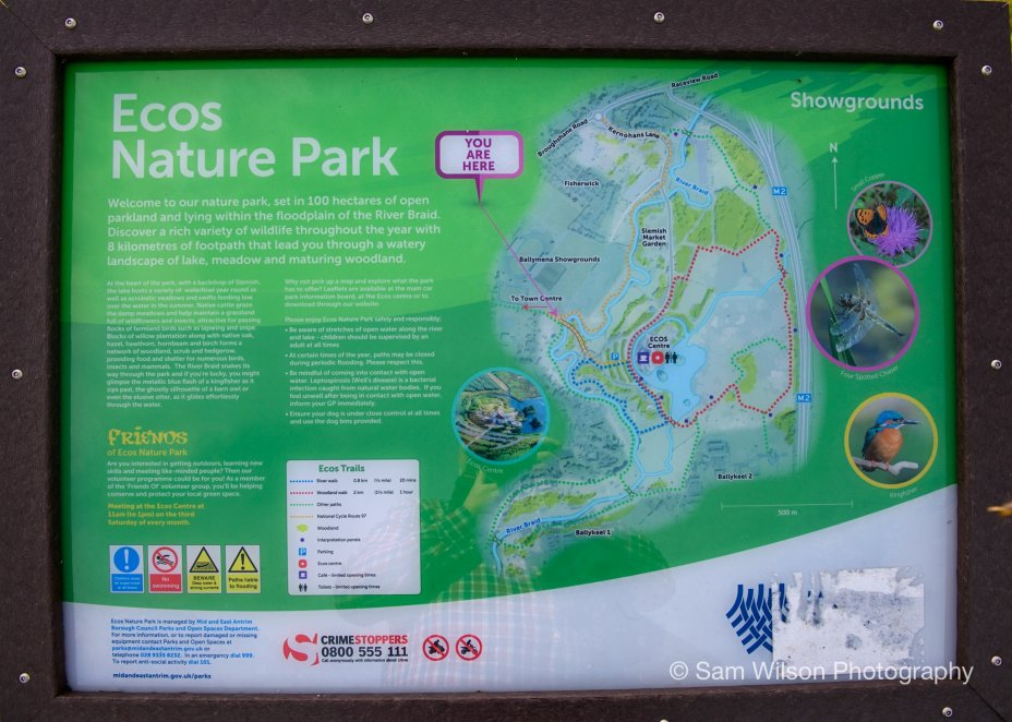 Ecos Centre Nature Park - Ballymena, Northern Ireland 2